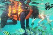 ดำน้ำตื้น-เกาะพีพี-เรือเฟอร์รี่