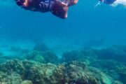 ทัวร์-ดำน้ำตื้น-เกาะรอก-เกาะห้า