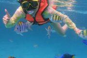 ทัวร์-ดำน้ำ-เกาะไม้ท่อน-เกาะราชาน้อย-Discover-Catamaran