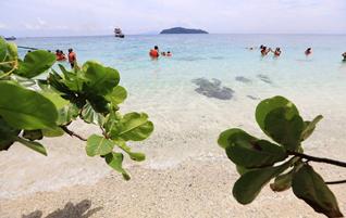 เรือใหญ่-เกาะพีพี-เกาะไม้ไผ่-ดำน้ำ-ดูประการัง-วันเดย์ทริป-2