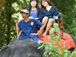 ทัวร์-พังงา-ล่องแก่ง-นั่ง-ช้าง-ขับ-ATV-โหนสลิง-A1-8