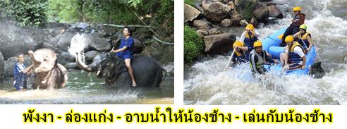 ล่องแก่ง-พังงา-อาบ-น้ำ-น้องช้าง-ทำ-อาหาร-ให้-ช้าง-E2-2