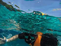 ทัวร์-เกาะ-พีพี-อ่าวมาหยา-เกาะ-ไม้ไผ่-เรือเร็ว-ภูเก็ต-4