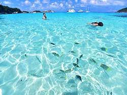 ทัวร์ภูเก็ต-วันเดย์ทริป-เกาะสิมิลัน-เต็มวัน-โดยเรือเร็ว-รวมรถรับ-ส่ง-9