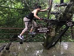กิจกรรมผาดโผนบนต้นไม้-โหนสลิง-กระบี่-ทรีท็อป-แอดเวนเจอร์-11