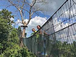 กิจกรรมผาดโผนบนต้นไม้-โหนสลิง-กระบี่-ทรีท็อป-แอดเวนเจอร์-4