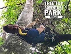 กิจกรรมผาดโผนบนต้นไม้-โหนสลิง-กระบี่-ทรีท็อป-แอดเวนเจอร์-9