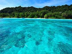 ทัวร์ล่องเรือคาตามารัน-ดูปลาโลมา-เกาะไม้ท่อน-ชมพระอาทิตย์ตกเกาะโหลน-ภูเก็ต-6