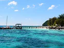 ทัวร์วันเดย์ทริป-เกาะไม้ท่อน-ล่องเรือชมปลาโลมา-โดยเรือคาตามารัน-เที่ยวภูเก็ต-5