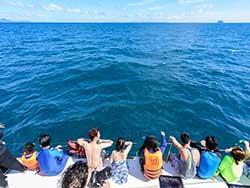 ทัวร์วันเดย์ทริป-เกาะไม้ท่อน-ล่องเรือชมปลาโลมา-โดยเรือคาตามารัน-เที่ยวภูเก็ต-7