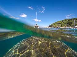 ทัวร์วันเดย์ทริป-เกาะไม้ท่อน-ล่องเรือชมปลาโลมา-โดยเรือคาตามารัน-เที่ยวภูเก็ต-8