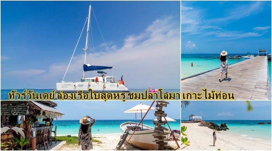 ล่องเรือใบสุดหรู ชมปลาโลมา เกาะไม้ท่อน