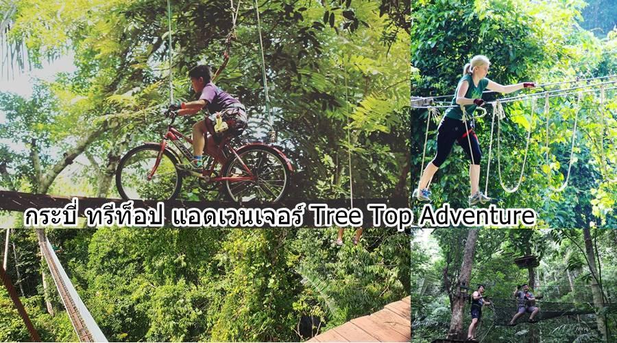กระบี่ กิจกรรม tree top adventure