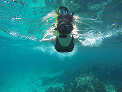 ดำน้ำตื้น-หมู่เกาะพีพี-กระบี่