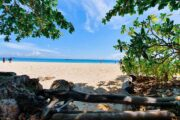 เกาะไผ่-กระบี่-พรีเมี่ยมทัวร์-เกาะพีพี