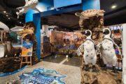 อควาเรีย-ภูเก็ต-aquaria-central